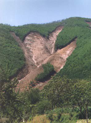 sarno_1998-1